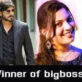bigboss season2 telugu winner