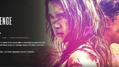 Photo of Revenge netflix Webseries Review