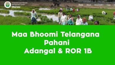 Photo of Check telangana land Records in Maa Bhoomi