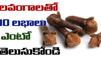 Photo of Medicinal Uses of Lavangam or Clove