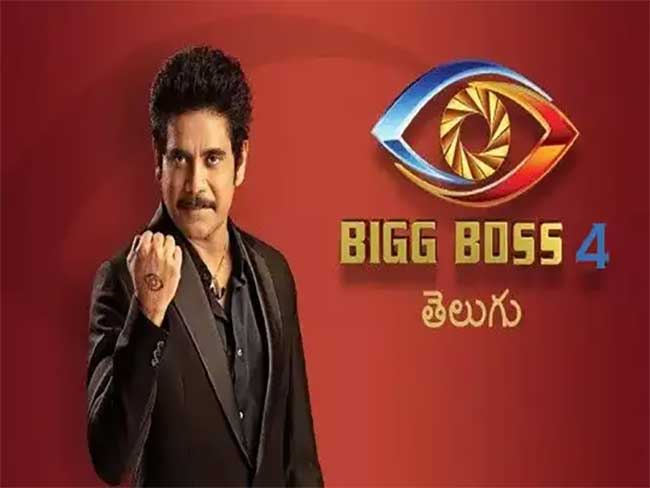 Bigboss 4 Contestants list