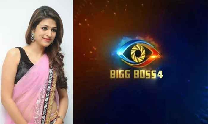 Shradha das clarification on bigboss 4