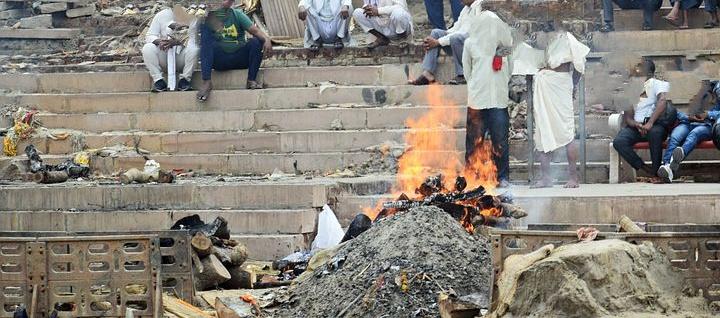 కుక్కలు పీక్కుతింటున్న కరోనా శవాలు, Coronavirus dead body cremation