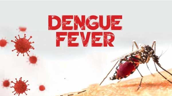 dengue symptoms in telugu