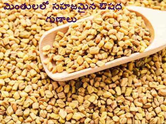 fenugreek seeds in telugu