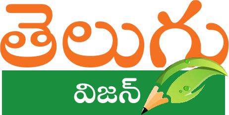 Telugu vision