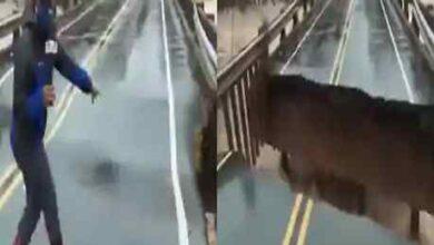 Photo of viral  video : పెను ప్రమాదాన్ని తప్పించుకున్న మహిళా జర్నలిస్ట్ … వైరల్ వీడియో !