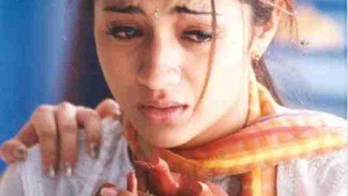 Photo of Trisha to be arrest Immediately : త్రిషను అరెస్ట్ చేయాల్సిందే :-
