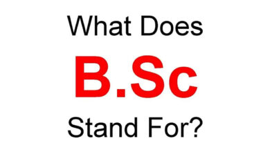 Photo of BSc Full Form, How many Forms do We use the BSc?